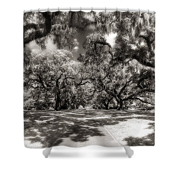 Live Oak Allee Infrared Shower Curtain