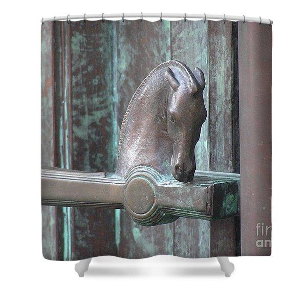 Ljubljana01 Shower Curtain