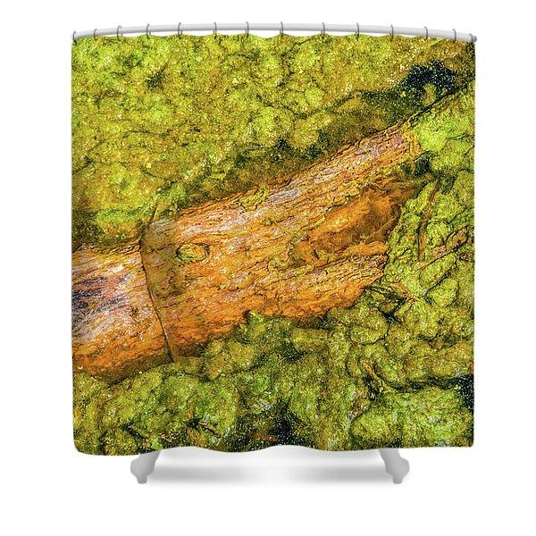 Log In Algae Shower Curtain