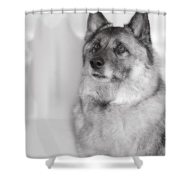 Loki Bw Shower Curtain