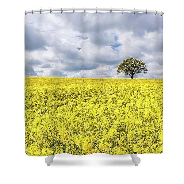 Shower Curtain featuring the photograph Lone Beauty by Nick Bywater