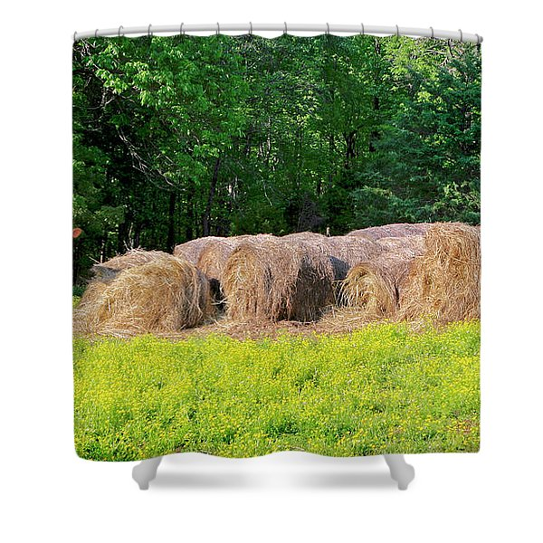 Lone Cow Guard, Smith Mountain Lake Shower Curtain