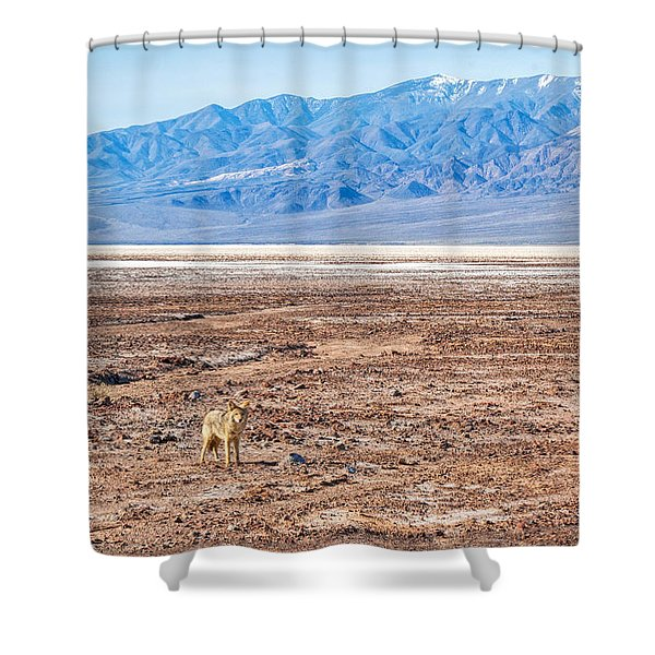 Lone Coyote Shower Curtain