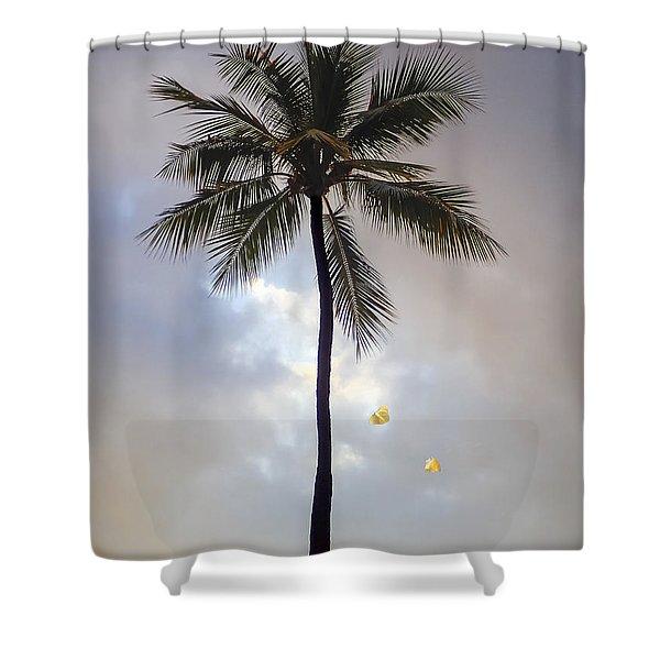 Lone Palm Tree Shower Curtain