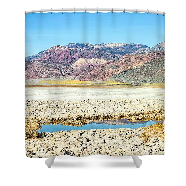 Lone Pool Shower Curtain