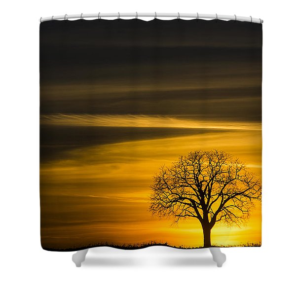 Lone Tree - 7061 Shower Curtain