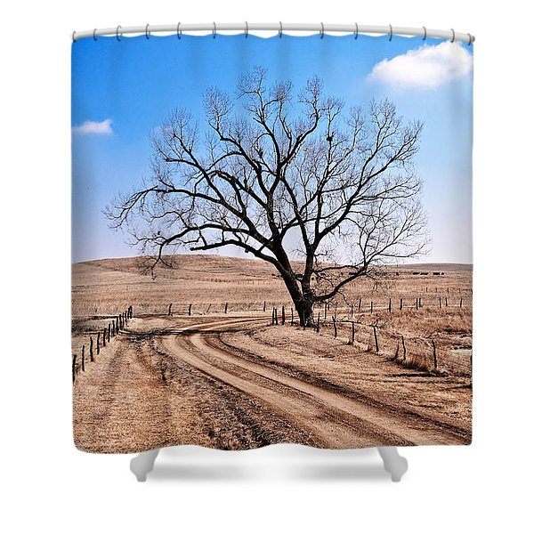 Lone Tree February 2010 Shower Curtain