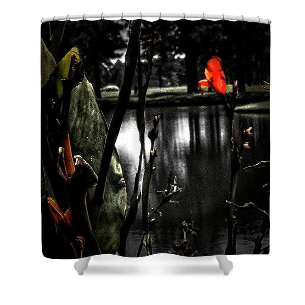 Shower Curtain featuring the photograph Loneliness by Gerlinde Keating - Galleria GK Keating Associates Inc