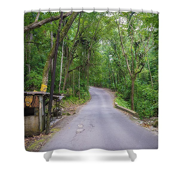 Lonely Country Road Shower Curtain