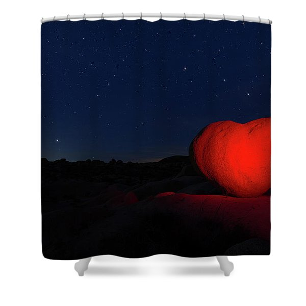 Lonely Heart   Shower Curtain