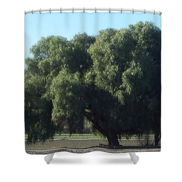 Lonely On The Back Roads Shower Curtain