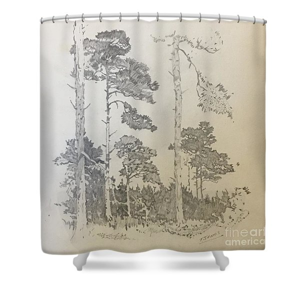 Lonely Pines Shower Curtain