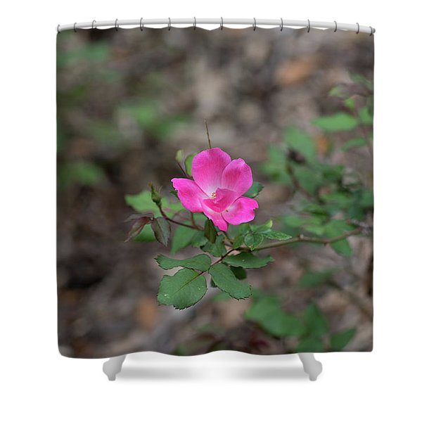 Lonely Pink Flower Shower Curtain