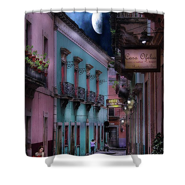 Lonely Street Shower Curtain