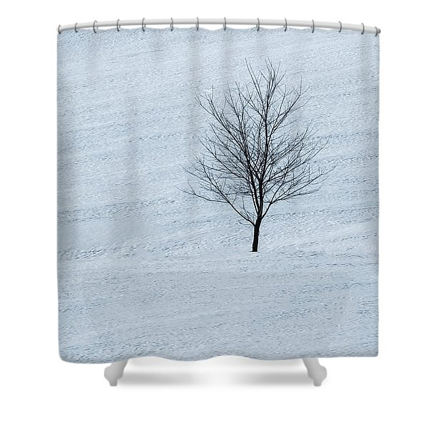 Shower Curtain featuring the photograph Lonely Tree by Tom Singleton