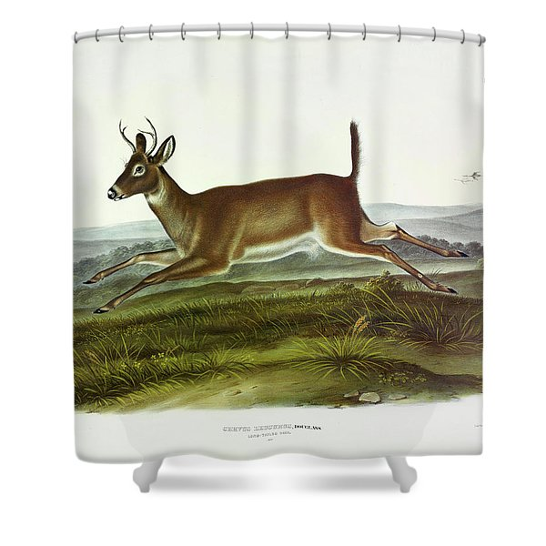 Long-tailed Deer Shower Curtain