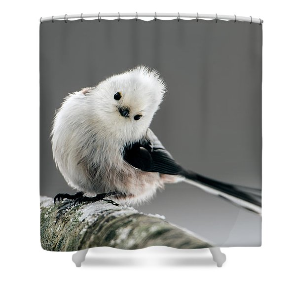 Charming Long-tailed Look Shower Curtain