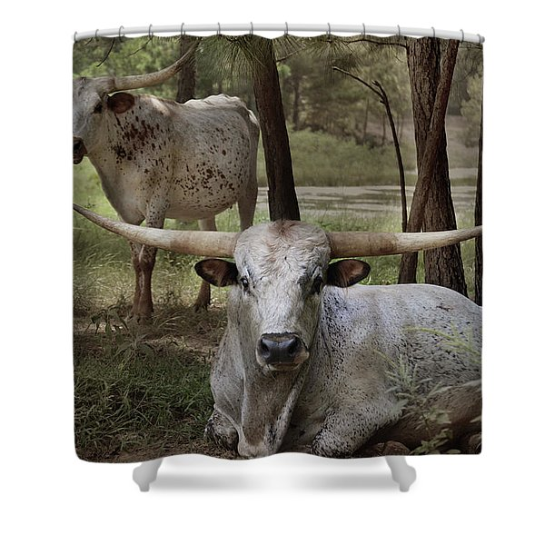 Longhorns On The Watch Shower Curtain