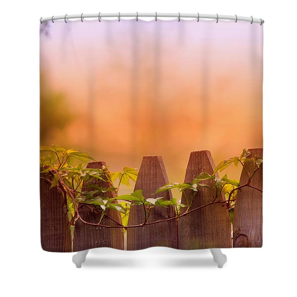 Look Beyond The Boundary Shower Curtain