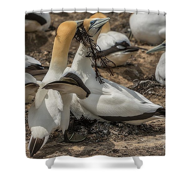 Look What I've Brought For You Shower Curtain