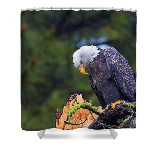 Looking Down On The World Shower Curtain by Mike  Dawson