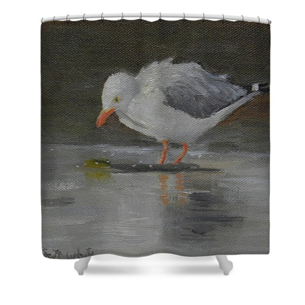 Looking For Scraps Shower Curtain