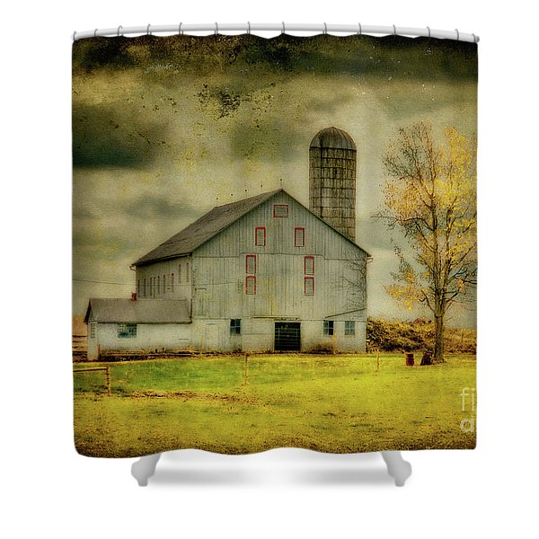 Looking For Dorothy Shower Curtain