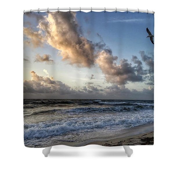 Looking For Food. Shower Curtain