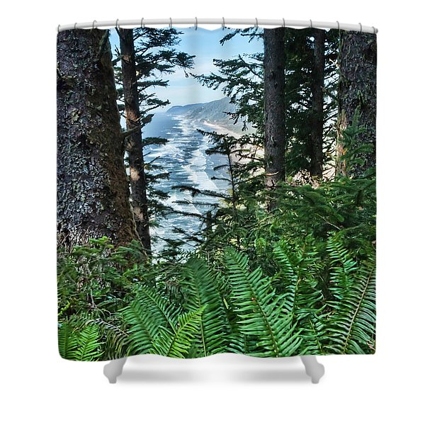 Looking North Shower Curtain