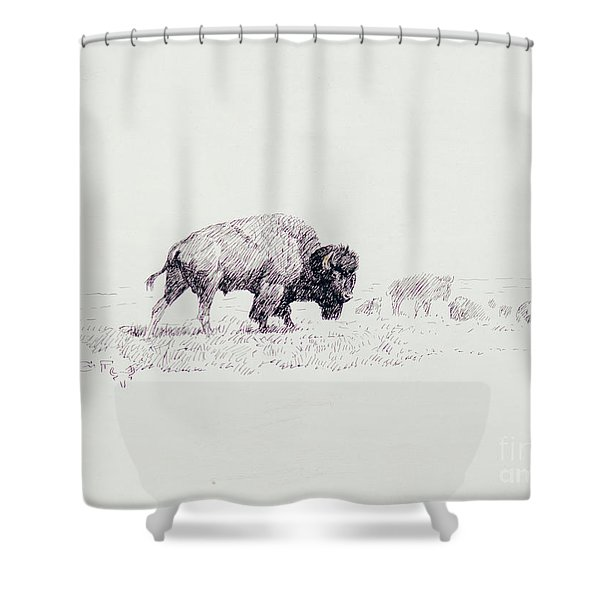 Lords Of The Yellowstone Shower Curtain