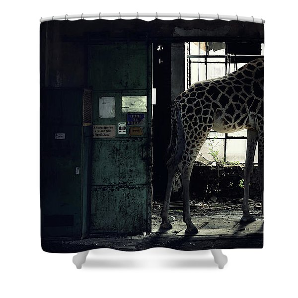 Lost Animals -  Series Nr.2 Shower Curtain