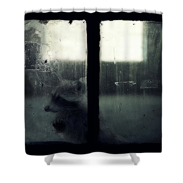 Lost Animals -  Series Nr.3 Shower Curtain