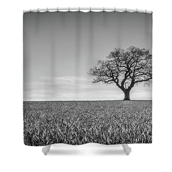 Shower Curtain featuring the photograph Lost by Nick Bywater