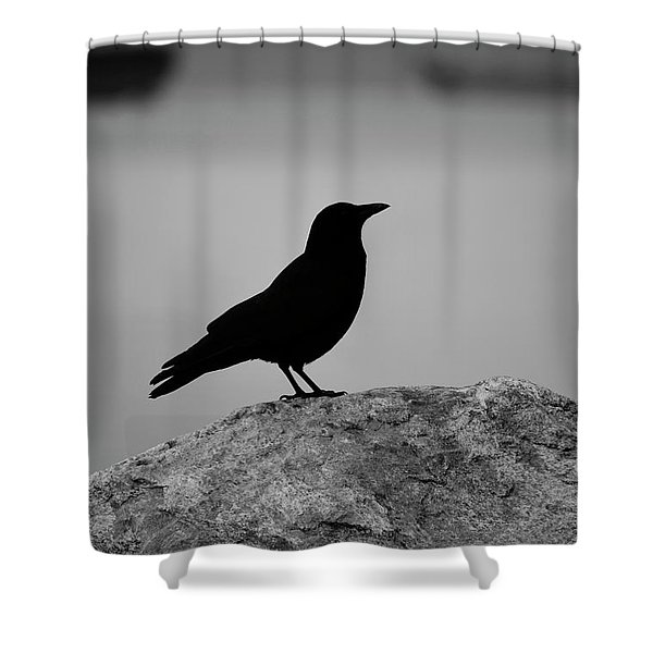 Lost Wings Shower Curtain