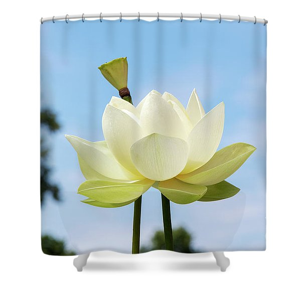 Lotus Debbie Gibson Flower Shower Curtain
