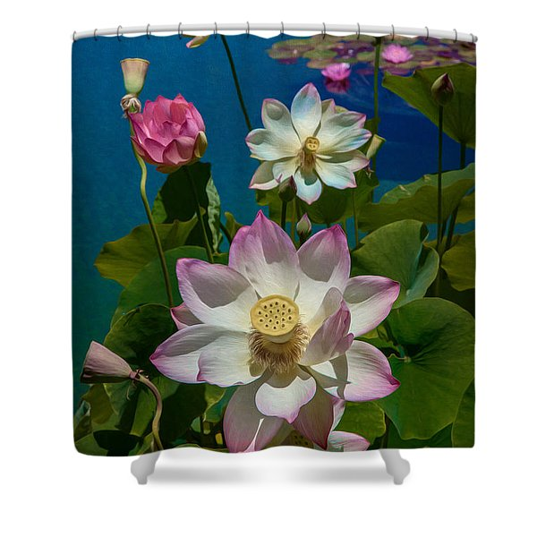 Lotus Pool Shower Curtain