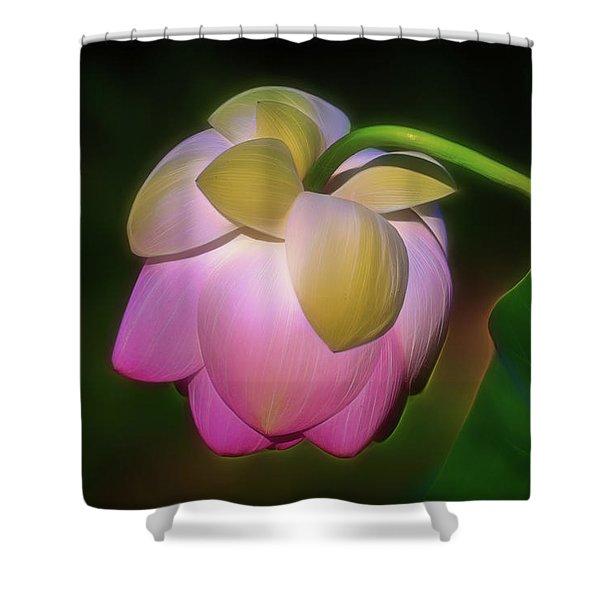 Lotus, Upside Down  Shower Curtain