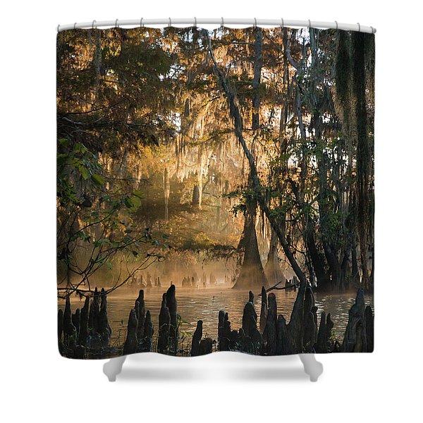 Louisiana Swamp - Early Morning Light Shower Curtain