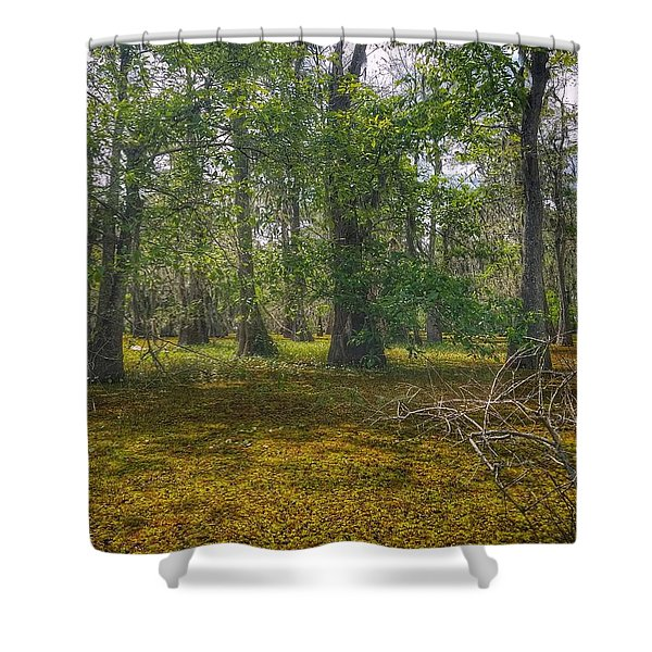 Louisiana Swamp Shower Curtain