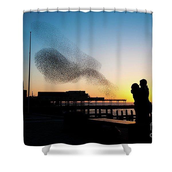 Love Birds At Sunset Shower Curtain