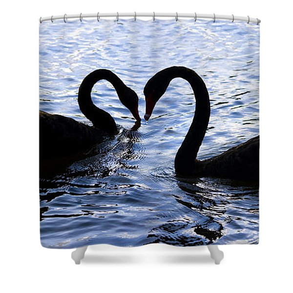 Love Birds On Swan Lake Shower Curtain