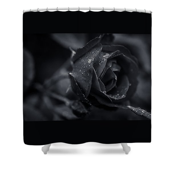 Sweet Love Roses And Water Shower Curtain