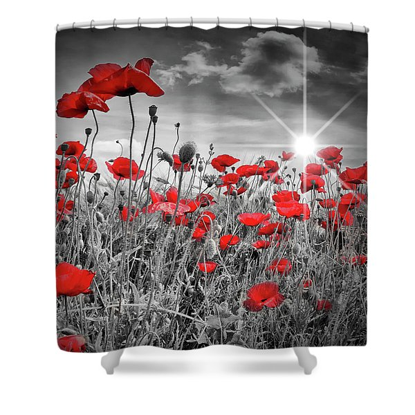 Lovely Field Of Poppies With Sun  Shower Curtain