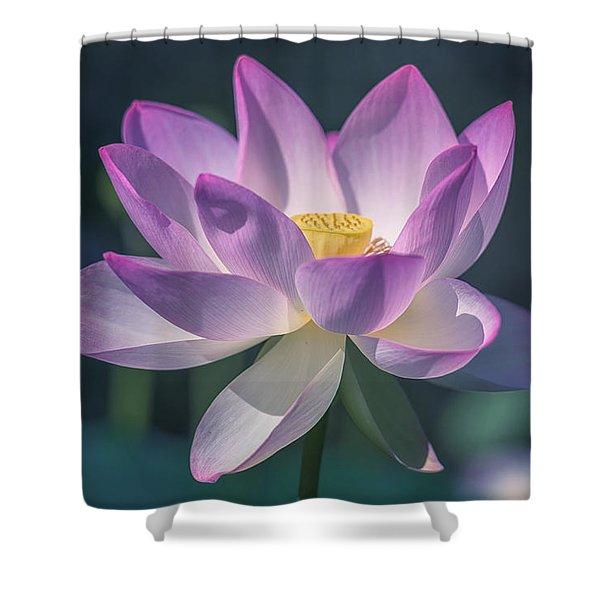 Lovely Lotus Shower Curtain