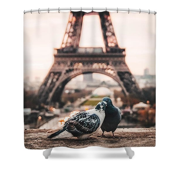Lover Doves In Paris Shower Curtain