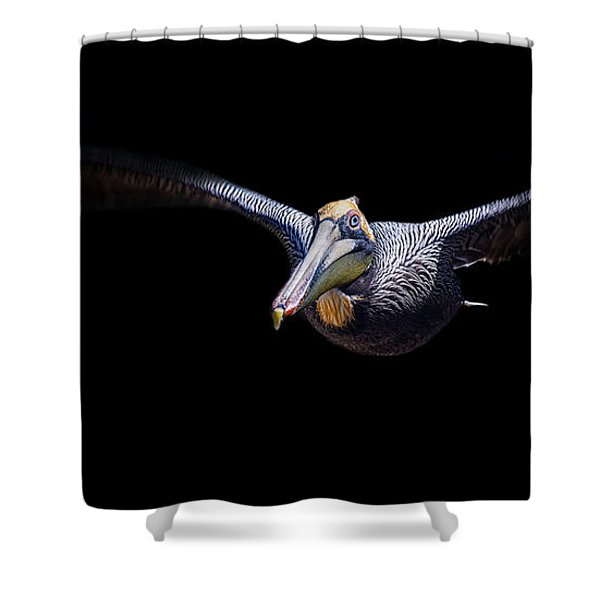 Low Flight Shower Curtain