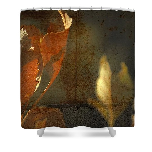 Low Months  Shower Curtain