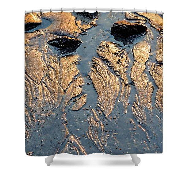 Low Tide Flow, Kettle Cove, Cape Elizabeth, Maine  -66557 Shower Curtain