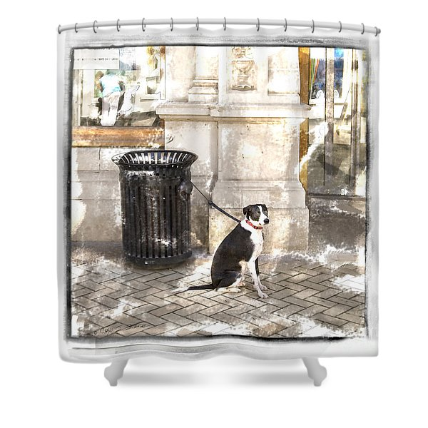 Loyal Dog Shower Curtain