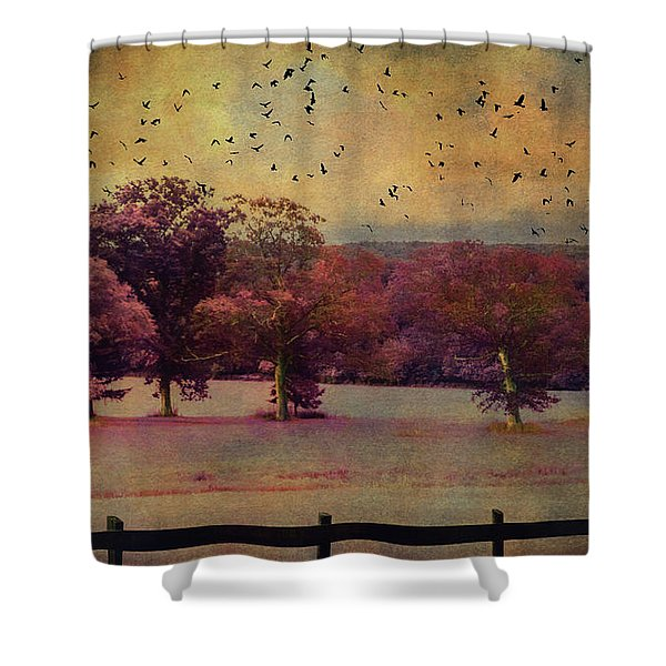 Lucid Ehereal Dream Shower Curtain